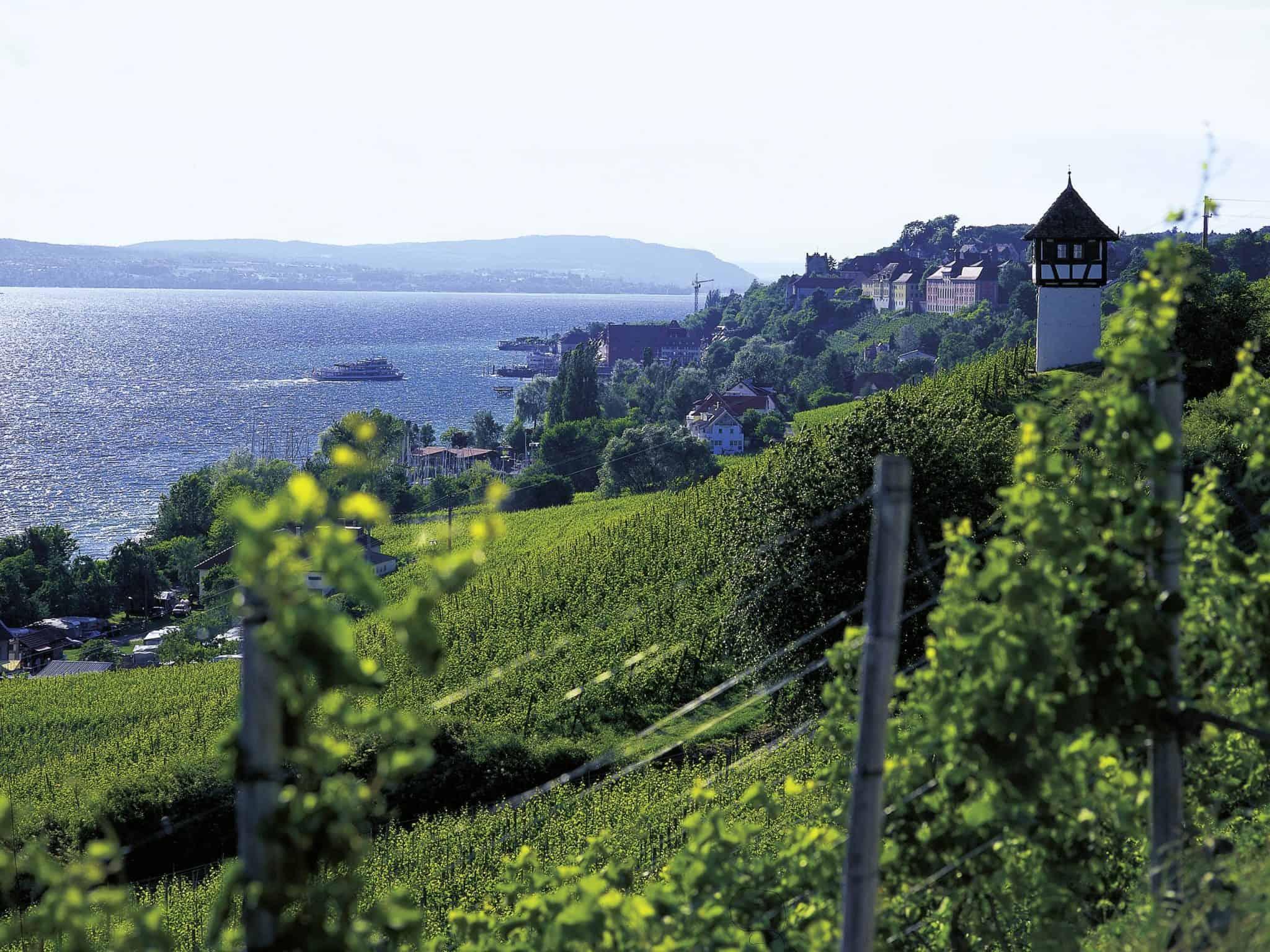 Ferienwohnung Meersburg Blick Wetterkreuz Meersbur